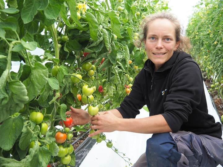 Klara är Göteborgs första stadsbonde