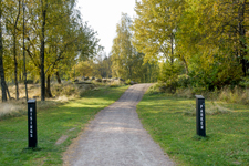 Fira valborg i en park där du bor